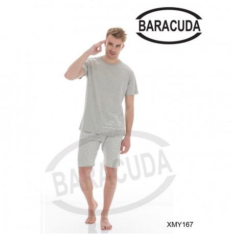 Baracudaxmy167